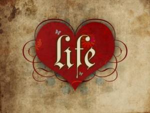 darul vietii